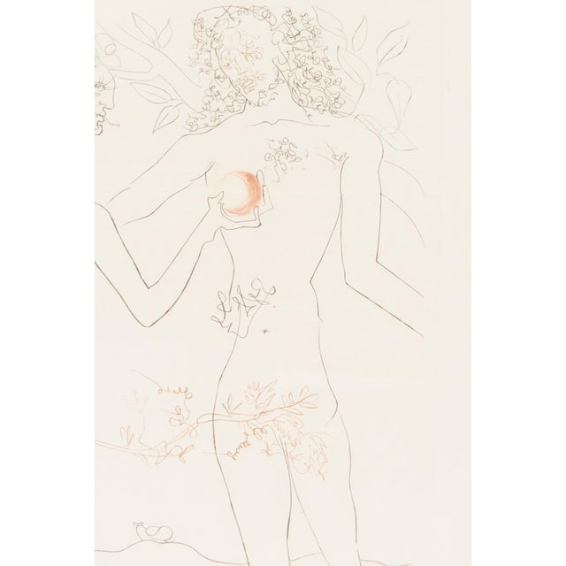 "Salvador Dali ""Adam & Eve"" Signed Lithograph - Image 4 of 10"