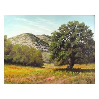 Texas Wildflowers Painting by Paul Kime