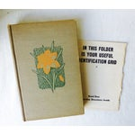 Image of Bouquet of Vintage Flower Books - S/3