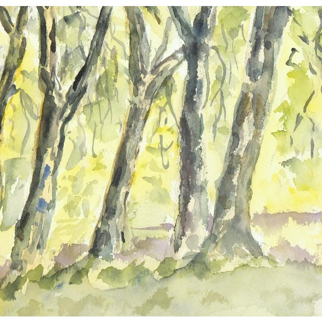 Original Vintage Watercolor Landscape - the Grove - Image 2 of 3