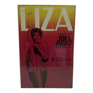 """1981 Vintage """"Liza"""" Chicago Concert Poster"""