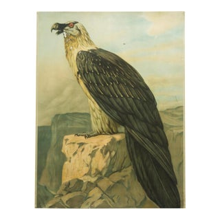German vintage eagle school poster