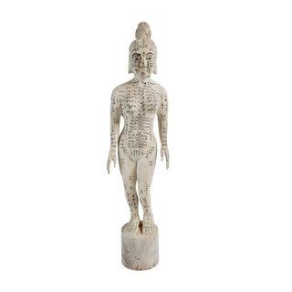 Chinese Acupuncture Statue Medium Female