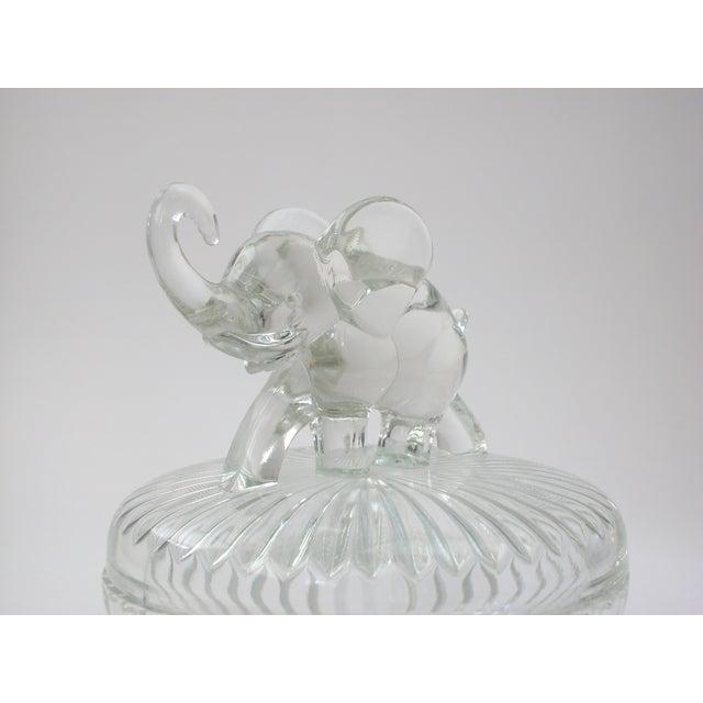 Glass Lidded Elephant Bowl - Image 5 of 7