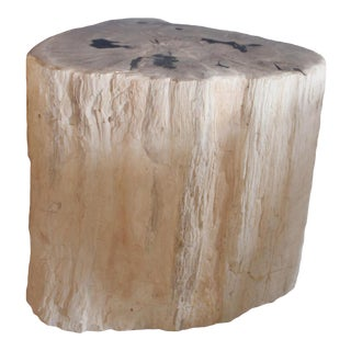 Petrified Wood Log Stool