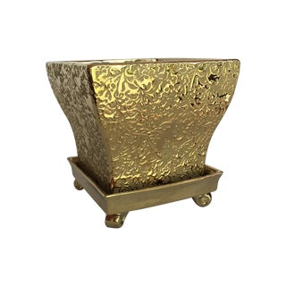 Golden Planter with Footed Saucer