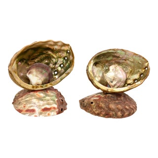 Antique Abalone Shell Lamps - A Pair