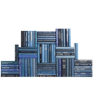 Modern Blue & Silver Book Wall, S/75