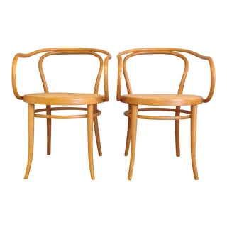 Stendig Mid-Century Bentwood Armchairs - A Pair