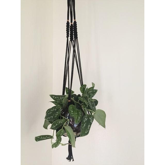Macrame Plant Hanger - Image 4 of 5