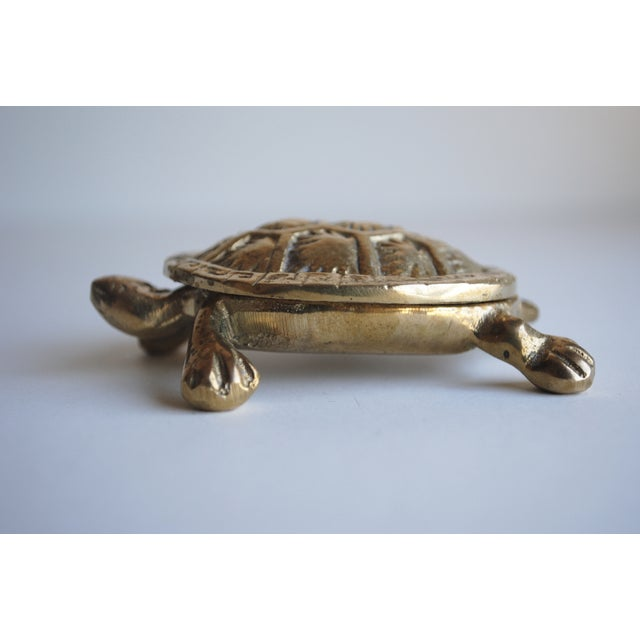 Small Brass Turtle Box - Image 3 of 5