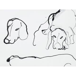Ink on Paper Dog Sketch