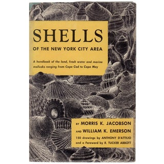 "1961 ""Shells of the New York City Area"" 150 Drawings"