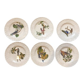 Set Of 6 Vintage Audubon's Birds of America Luncheon Plates