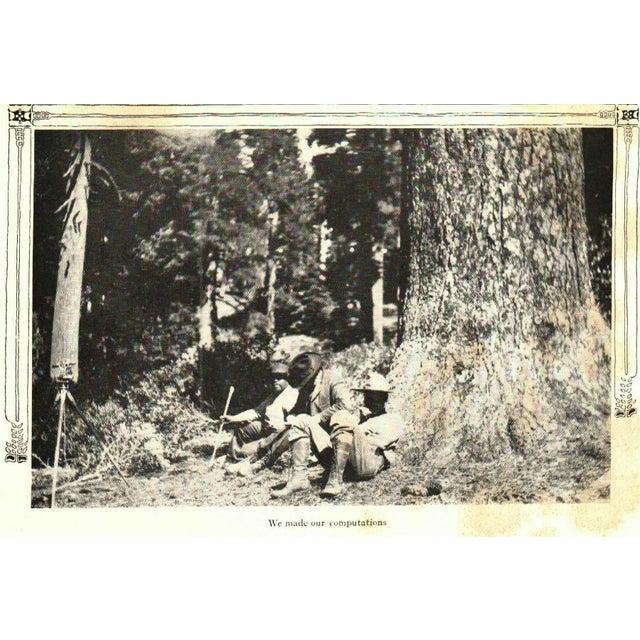 Stewart Edward White: The Cabin, Signed - Image 4 of 4