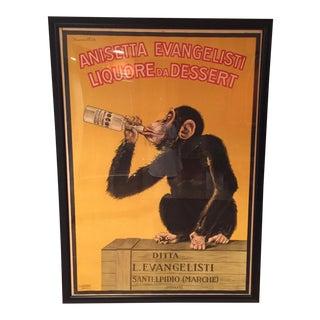 "Anisetta Evangelista ""Drunken Monkey"""