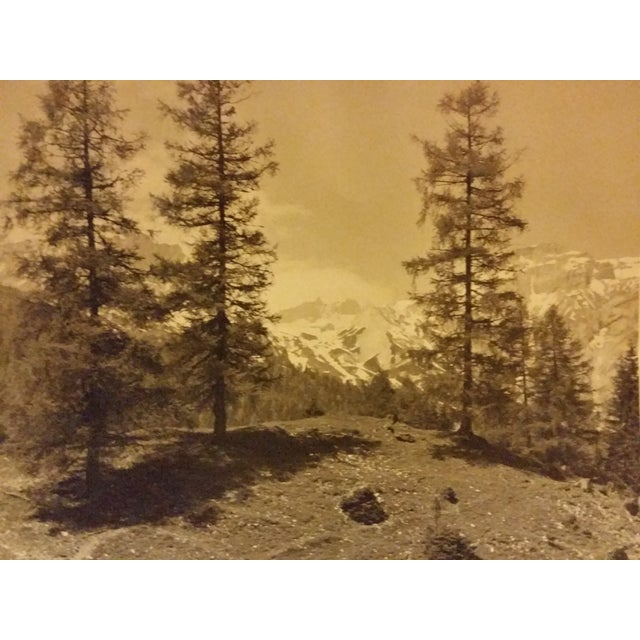 Image of Early 20th-C. Ringelspitz Alps Photography