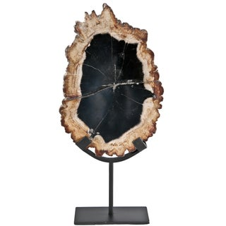 Petrified Wood Slice on Iron Stand