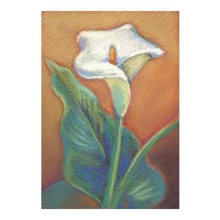 Calla Lily Pastel Drawing