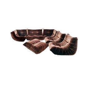Brown Velvet Togo 6-Piece Sectional by Michel Ducaroy for Ligne Roset (Arconas Limited Edition), 1979