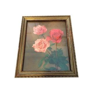 Mid Century Rose Picture