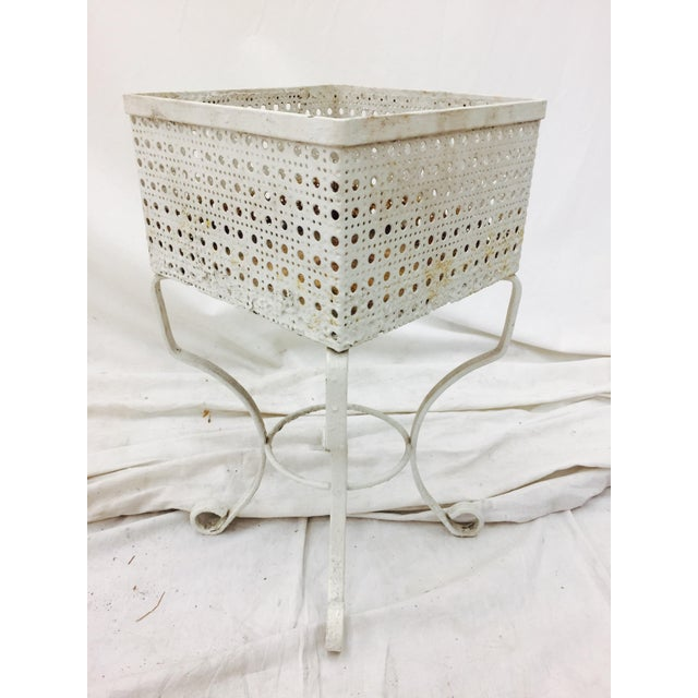 Victorian White Cane Metal Planter Stand - Image 3 of 5