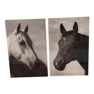 Bonnie Edelman Sermo Per Equus Photographs - a Pair